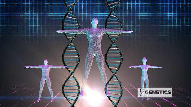 Genetics: The Secret to a Perfect Body