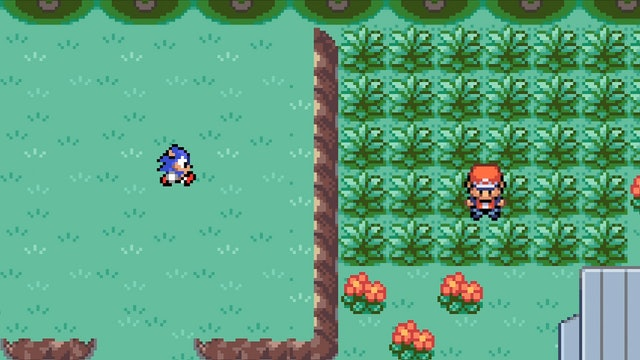 Sonic vs. the Pokemon World