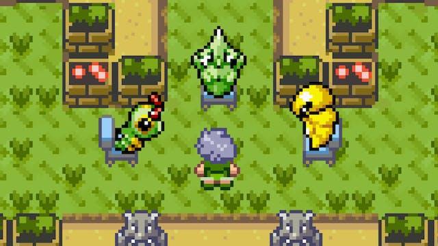Pokemon Bug Trainer Intervention