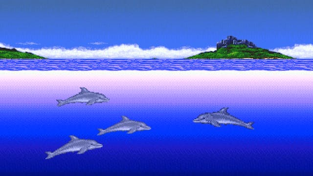 Ecco's Friends Are Stupid Dolphins
