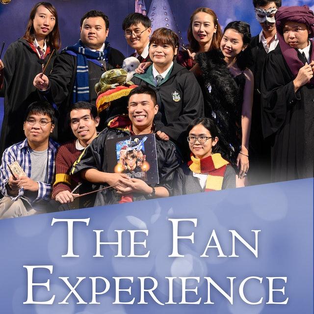The Fan Experience