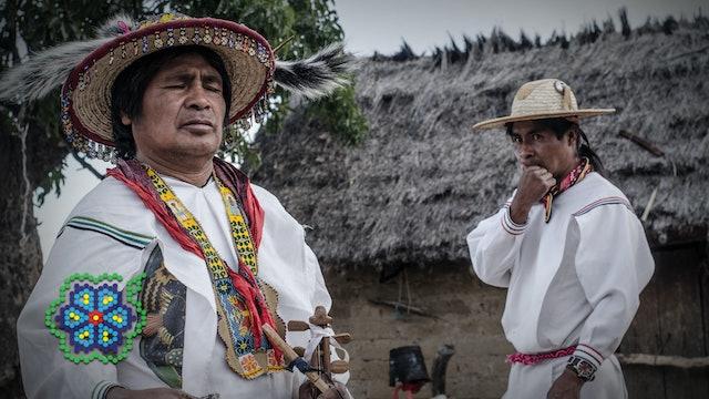 Huicholes: The Last Peyote Guardians