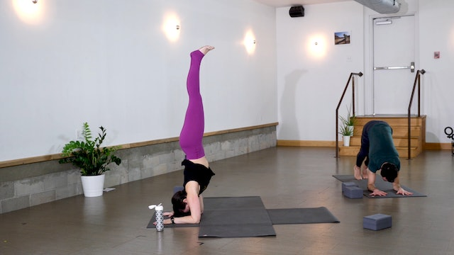 Vinyasa: Non-attachment  + Pincha Play with Ann Fancy