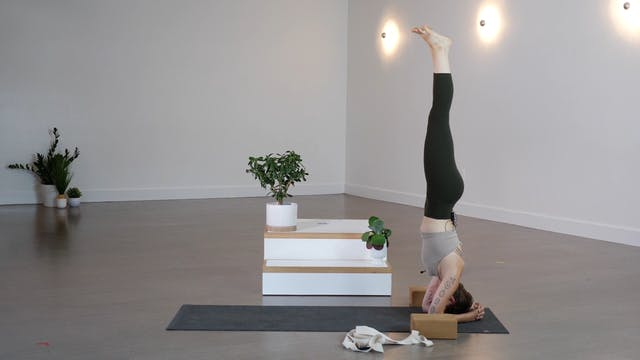 Vinyasa: Dissolve Anxiety with Giustina