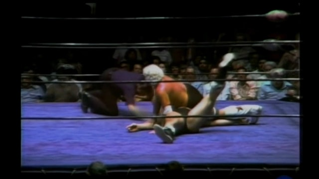 Bruiser Brody vs. Dusty Rhodes (rematch)