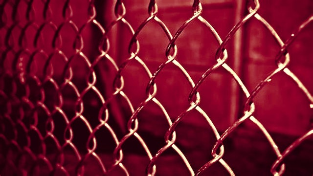 Steel Cage Matches