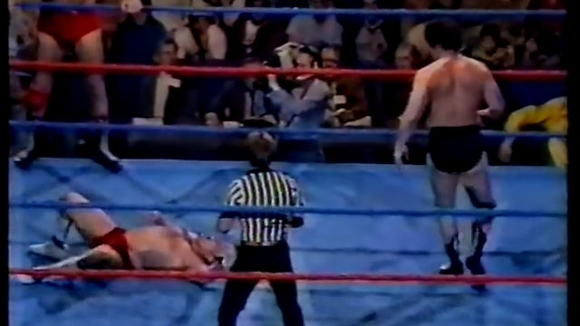 Ronnie Garvin and Buddy Roberts vs Giant Baba and Tenyru (Japan)