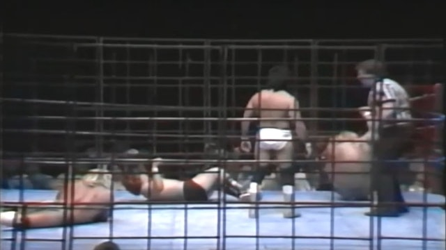 The Fabulous Ones vs. The Guerreros (CAGE MATCH)