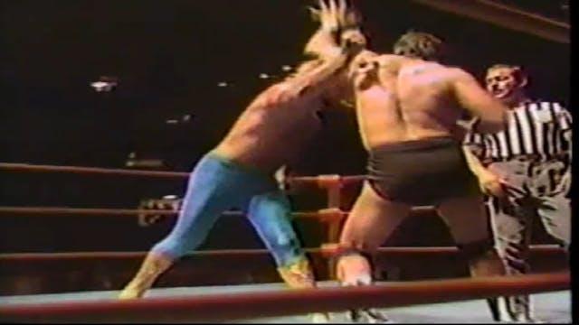 Rick Martel vs. Micheal Hayes