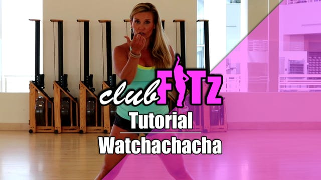 Tutorial of Watchachacha by Sage the ...