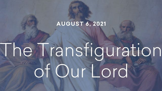 Daily Reflections – Feast of the Tran...