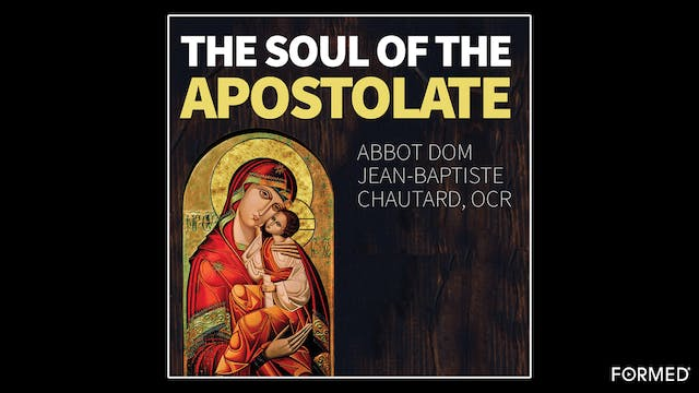 The Soul of the Apostolate by Matthew...