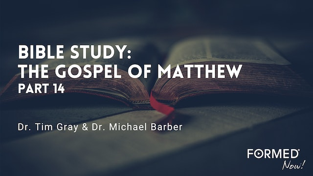 FORMED Now! Bible Study on the Gospel of Matthew (Part 14)