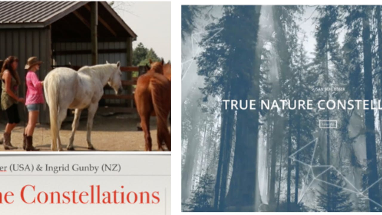 Equine and Nature Constellations (Buy one get one free deal)
