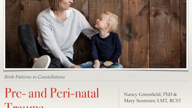 Pre- and Peri-natal Trauma: Birth Patterns in Constellations with Nancy Greenfield PhD and Mary Seamster LMT