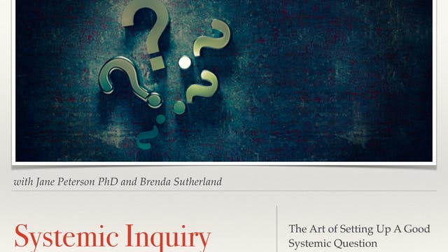 Systemic Inquiry (trailer) with Dr Jane Peterson & Brenda Sutherland