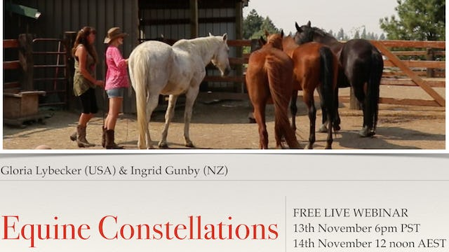 Equine Constellations with Gloria Lybecker (USA) and Ingrid Gunby (NZ)