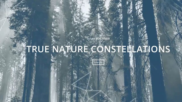 Nature Constellations with Susan Schlosser (USA)