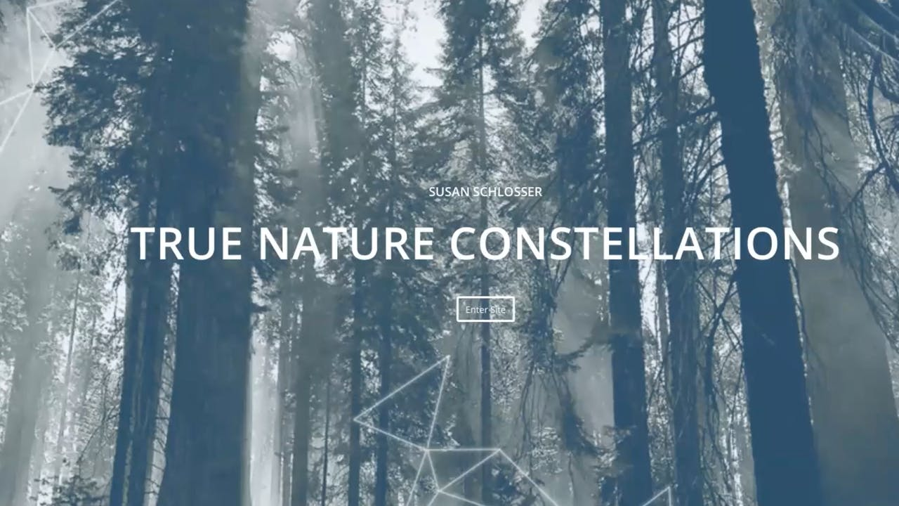 Nature Constellations with Susan Schlosser (USA)