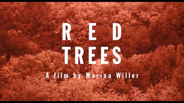 Red Trees - Trailer