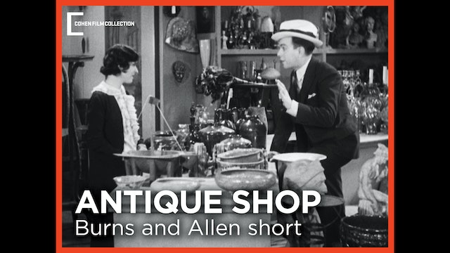 The Antique Shop