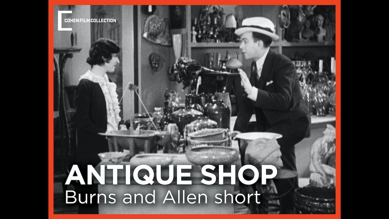 The Antique Shop
