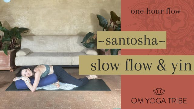 1 Hour : Santosha Flow with Cole Chance