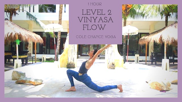 1 Hour: Level 2 Vinyasa Flow with Cole