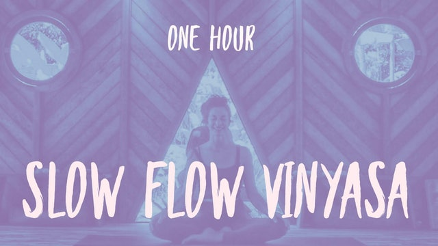1 Hour: Slow Flow Vinyasa with Cole