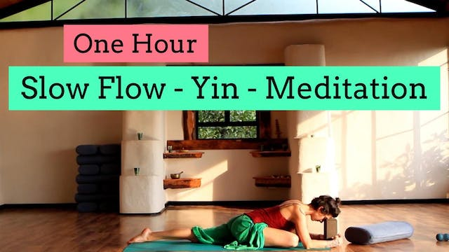 1 Hour: Meditation and Soft Yoga Flow with Cole
