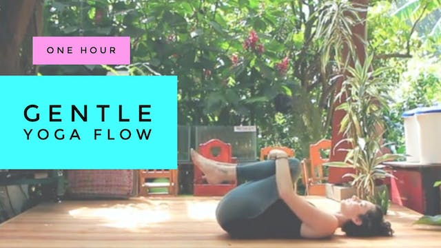 1 Hour : Gentle Yoga Flow with Cole Chance