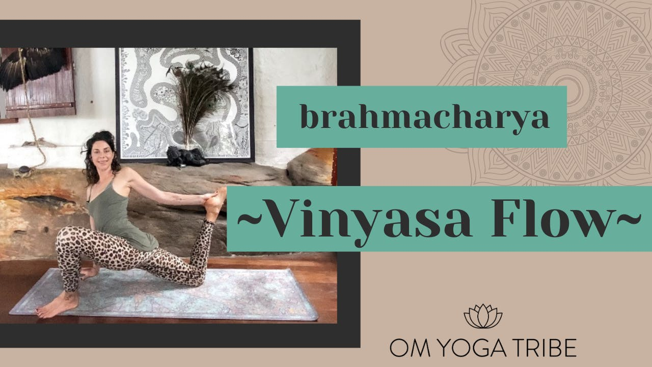 1 Hour: Brahmacharya Vinyasa Flow with Cole Chance