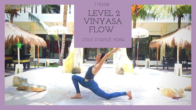 1 Hour : Level 2 Vinyasa Flow