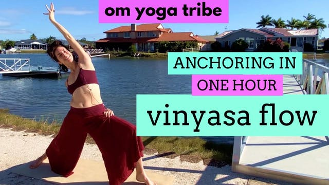 1 Hour : Anchoring in Vinyasa Flow