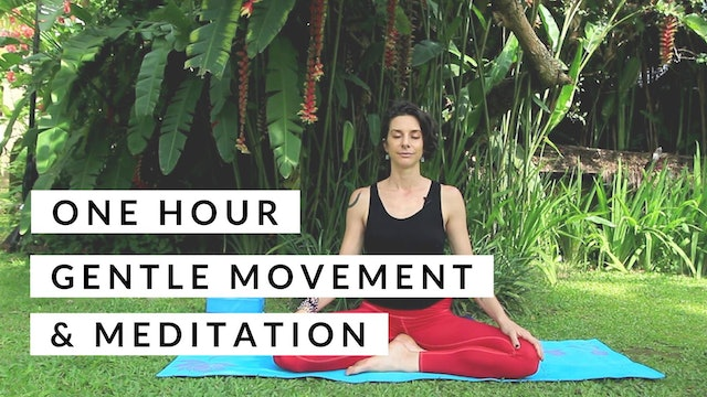 1 Hour : Gentle Yoga and Medition with Cole Chance