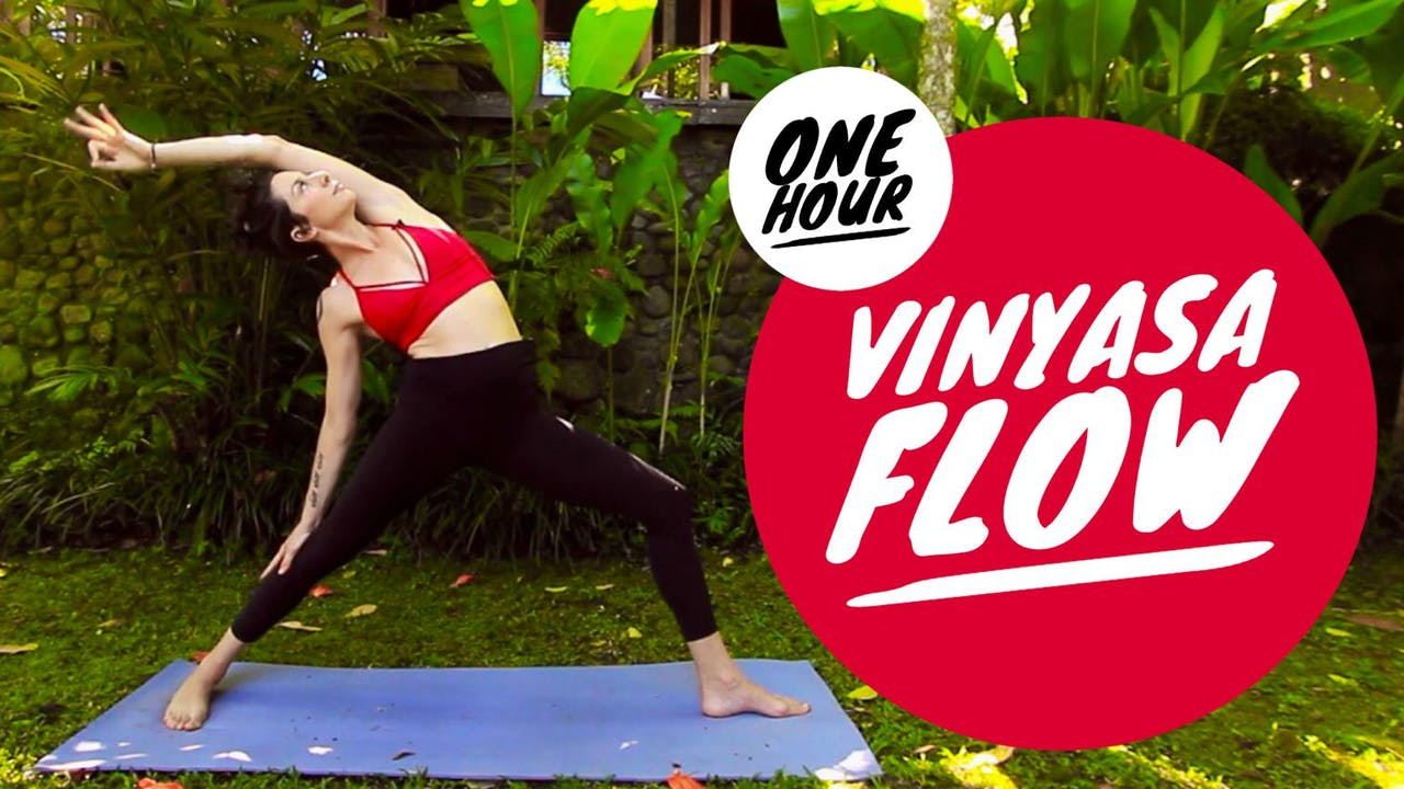 1 Hour: Vinyasa Flow with Cole Chance