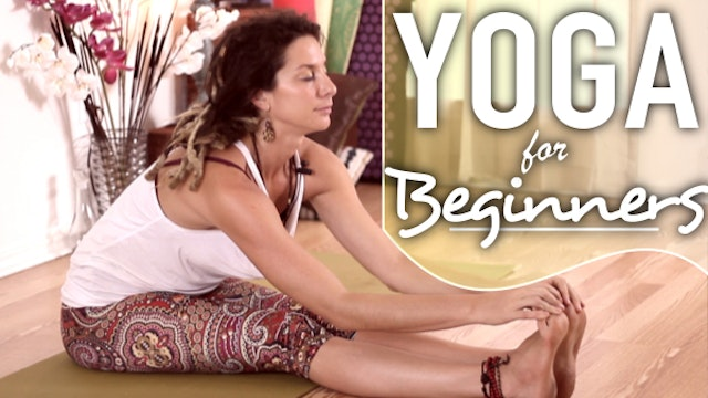 Yoga For Beginners - Gentle Full Body Stretches For Flexibility & Relaxation
