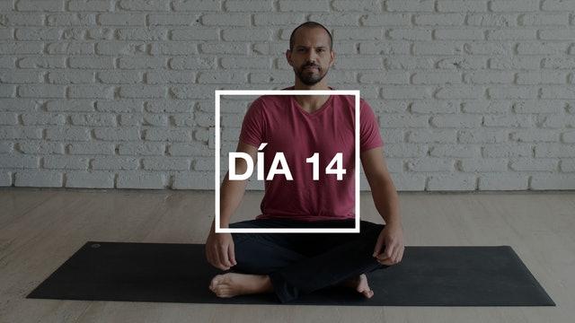 Día 14: Energía Vital con Andrés