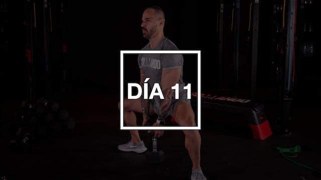 Día 11: Pecho & Bíceps con Pico