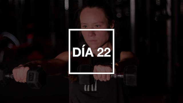 Día 22: HIIT Full Body Workout con Andie