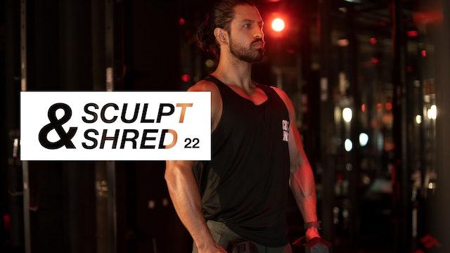 Entrenamiento 22: Bíceps, tríceps y hombros con Pete