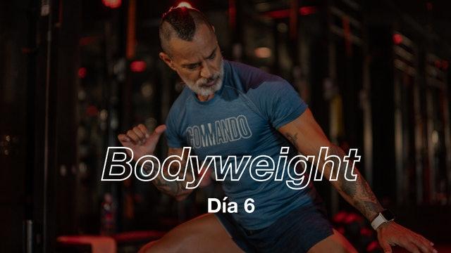 Día 6: Full Body 8 exercises con Pico