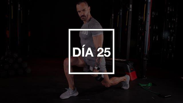 Día 25: Bíceps, Tríceps & Hombros con...