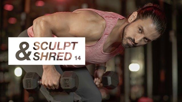 Entrenamiento 14: Espalda y tríceps ...