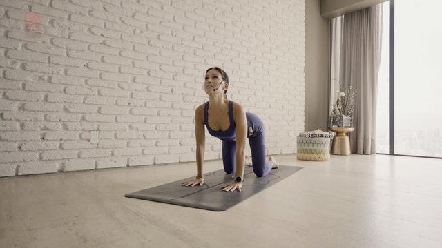 Yoga con Fer