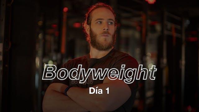 Día 1: Full Body con Ricardo