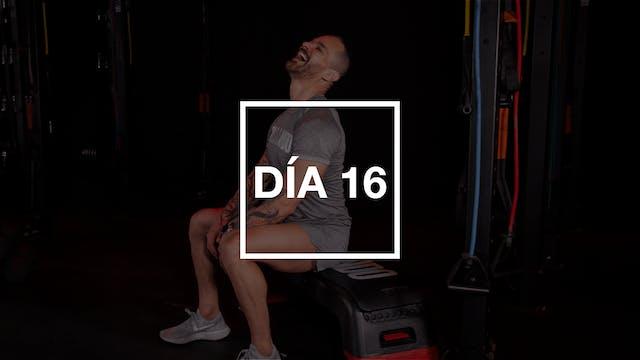 Día 16: Espalda & Tríceps con Pico