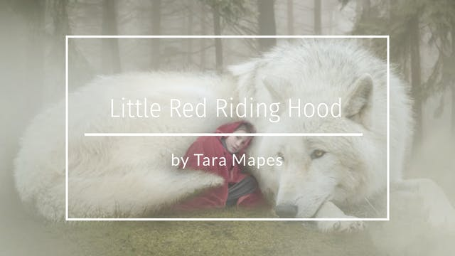 Little Red Wolf Composite Tara Mapes ...