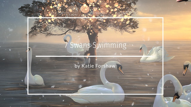 7 swans swimming