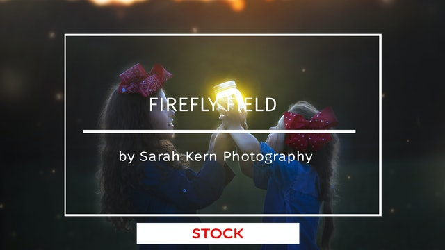Firefly Field by Sarah Kern Photography | AUGUST 2020